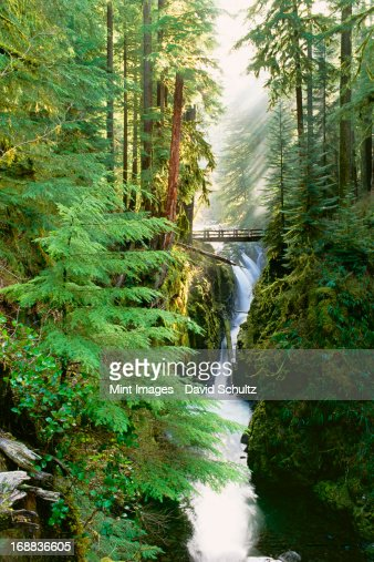 Sol Duc Falls are in the forest of Olympic National Park, Washington State. : Bildbanksbilder