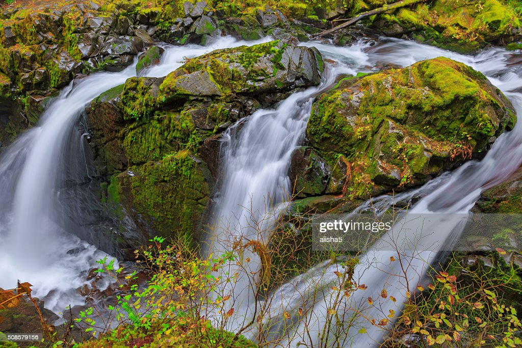 Sol Duc waterfall in Rain Forest : Stockfoto