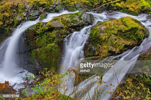 Sol Duc-Wasserfall in den Regenwald : Stock-Foto