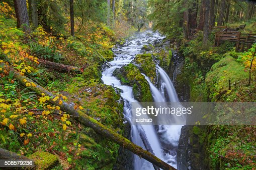 Sol Duc waterfall in Rain Forest : Stock Photo