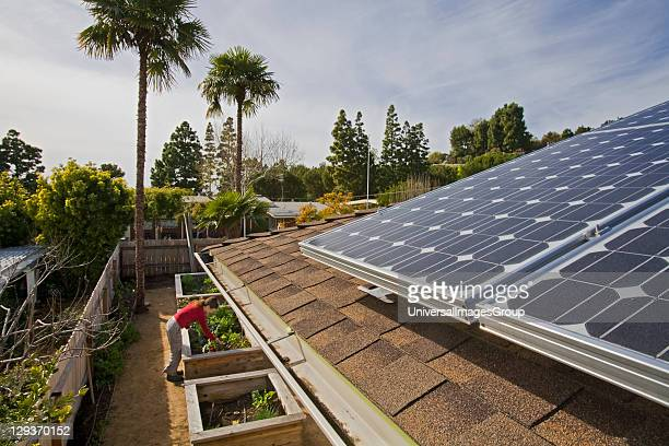 Solar Array on roof of house Urban garden encircles house in Rancho Palos Verdes The three year old garden has a variety of citrus Nectarine Peach...