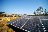 solar farm green energy from sun light show a lot of solar cell plate
