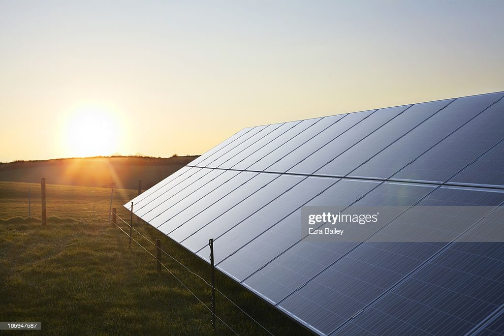 Solar Panels in a field at sunrise.