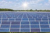 solar panels  in power station alternative energy from the sun