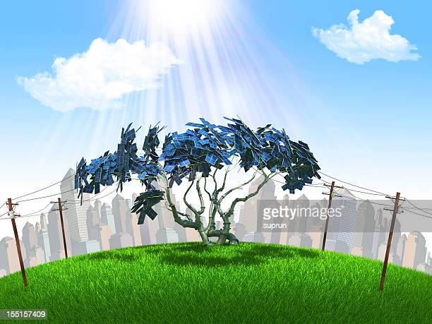 ソーラーの木