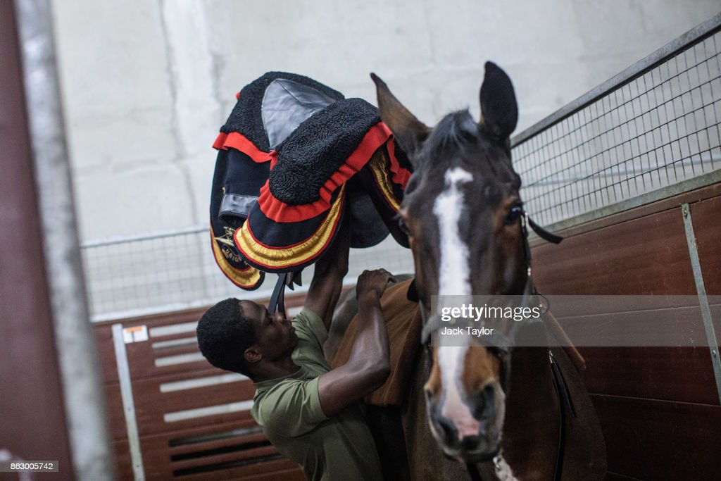 A soldier from the King's Troop Royal Horse Artillery places a saddle on to a horse at Wellington Barracks ahead of their 70th anniversary parade on October 19, 2017 in London, England. Queen Elizabeth II will review the King's Troop Royal Horse Artillery to mark the 70th anniversary in Hyde Park today. 'The Troop' is a ceremonial mounted unit made up of 111 horses and a number of First World War state saluting guns which are fired during Royal Anniversaries and State Occasions.