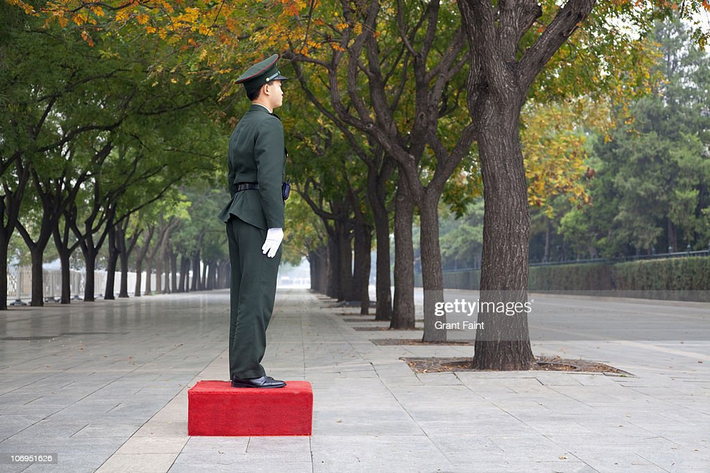 Soldier guard on duty. : Stock Photo