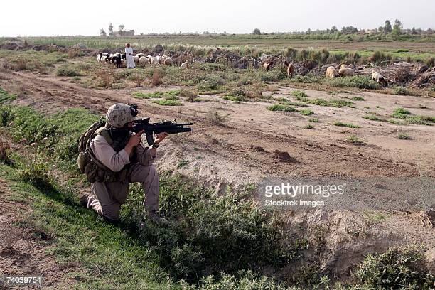 A soldier scans the distance with his rifle's scope while on a knock-and-talk patrol in Zaidon, Iraq. Marines patrolled the area, speaking with locals to find out about trouble spots. One tip led them to a buried insurgent sniper rifle.