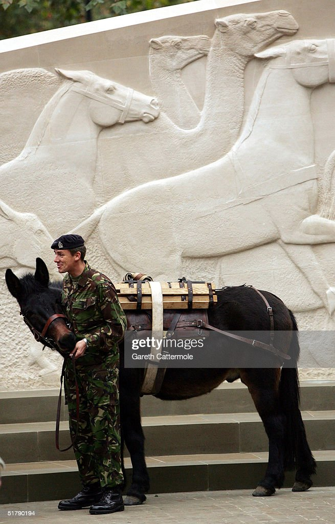 A soldier stands with a horse at the opening of David Backhouse's memorial honouring animals that served the UK in conflicts around the world during the 20th century at Brook Gate, Park Lane on November 24, 2004 in London.