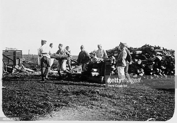Soldiers of the French Foreign Legion stacking logs Syria 20th century The French Foreign Legion was established in 1831 as an elite unit of foreign...