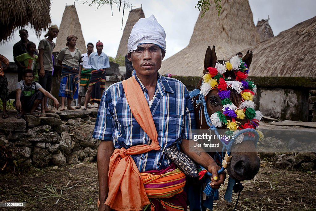 Soleman Ndara Pico, 29, a Pasola rider poses before heading to the main pasola field during the pasola war festival at Wainyapu village on March 7, 2013 in Sumba Island, East Nusa Tenggara, Indonesia. Sandalwood pony horses are native to the island of Sumba in Indonesia. For the people of Sumba, the Sandelwood horse has an important role in all aspects of their daily life, including transportation and culture. On the island of Sumba the ancient tradition of Pasola still draws large crowds and tourists. Pasola involves two teams of men on horseback charging towards each other.