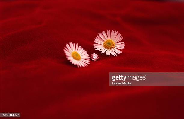 Solitaire diamond sitting between two small flowers on red velvet