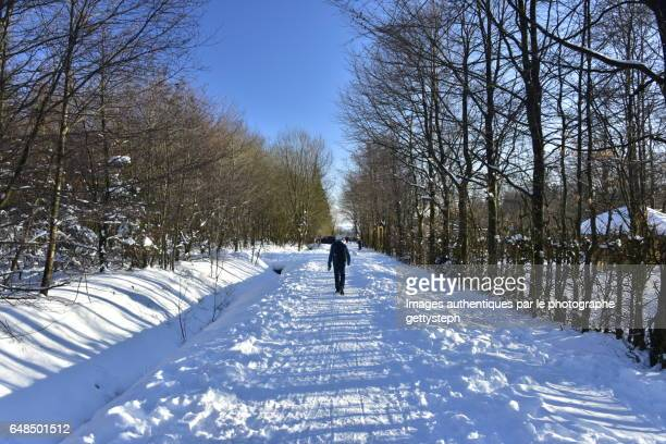 A solitary man walking on snowy footpath