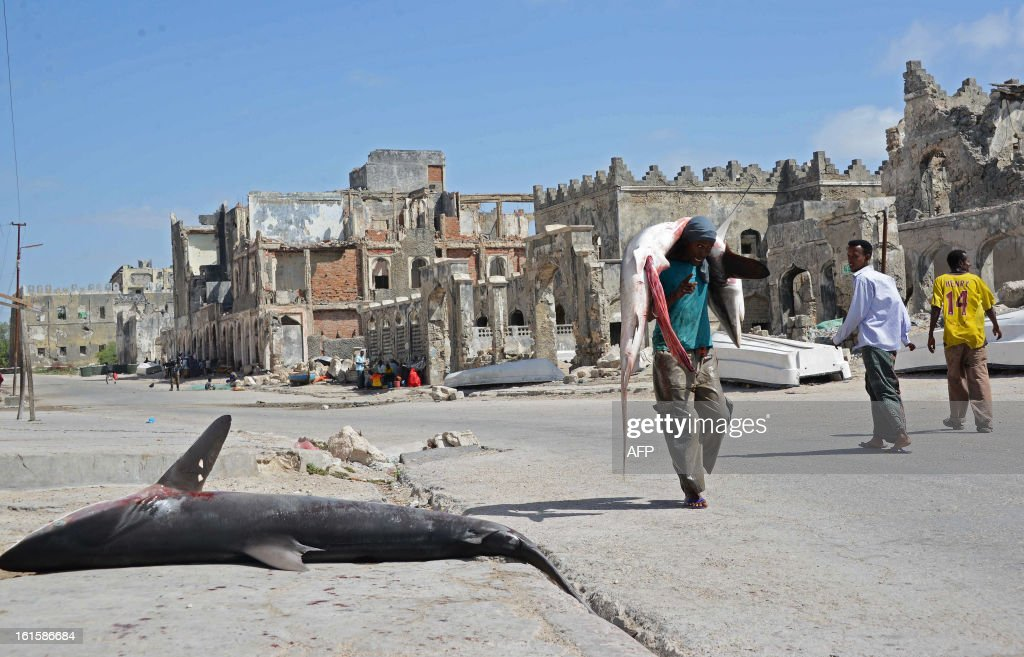 A Somali fisherman carries a shark on his back as he walks through the streets of Mogadishu on February 12, 2013. Due to the large population of sharks off the Somali coast, fishermen often catch sharks out to sea which are then sold at market. AFP PHOTO/Mohamed Abdiwahab