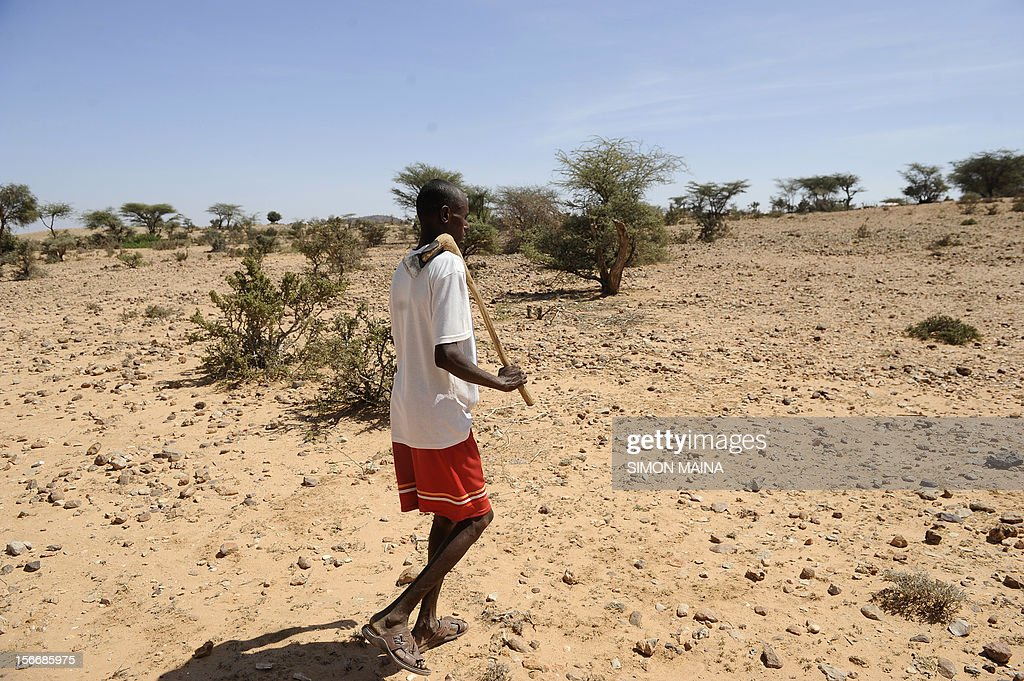 Somali men Hassan Hussein walks through an empty field that once had trees but has since been deserted due to tree being cut and made into charcoal...