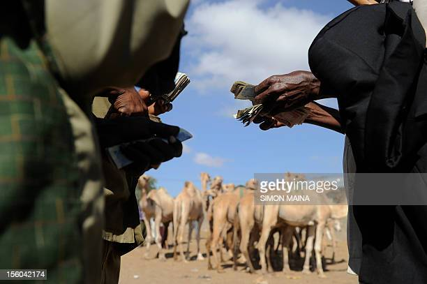 Somaliland farmers Ismael Hassan and Abdi Noor Husein count money they got on October 292012 selling their camel at Sayladah market in Hargeisa...