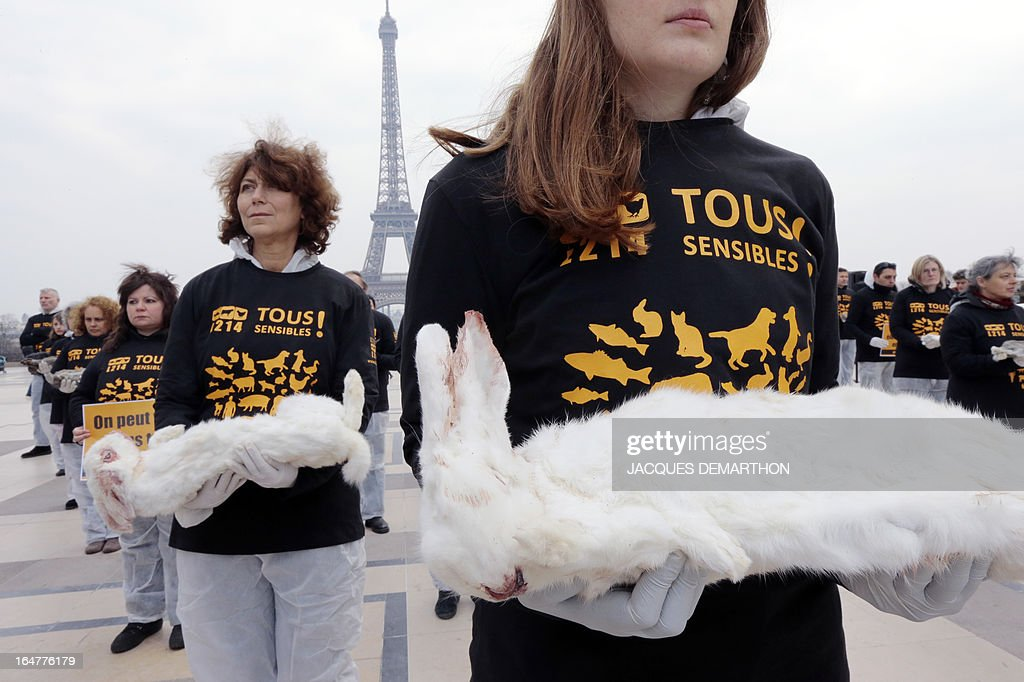 Some 100 meembers of the French animal-protection group L214 carry dead rabbits on March 27, 2013 on the Trocadero plazza in Paris to protest against poor conditions, like the excessive use of antibiotics and medecine, at industrial rabbit farms.