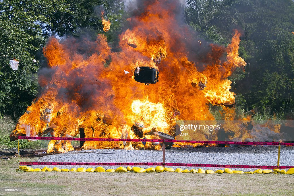 Some 3.2 tonnes of drugs - mainly cocaine, heroin and marijuana - are burned in Pedro Brand, Dominican Republic on December 20, 2012, from 10 tons that were seized. AFP PHOTO/Erika SANTELICES