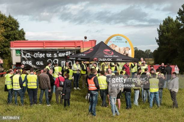 Some 60 duck farmers gather as they block roads beetween Dax and MontdeMarsan in Tartas on September 15 2017 as part of a protest action called by...