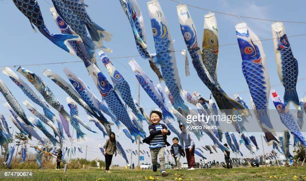 Some 600 blue carp streamers fly in Higashimatsushima Miyagi Prefecture on April 29 in memory of children killed in the March 2011 tsunami that...