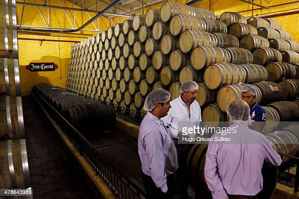CONTENT] TEQUILA JALISCO MEXICO APRIL 06 Some men sniff one wooden casks containing old tequila in distillery La Rojeña located in the town of...