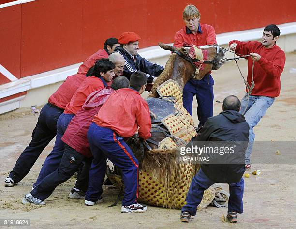 Some 'monosabios' help a picador horse to stand up as it fell because of the soaked sand of the bullring during the sixth corrida of the San Fermin...