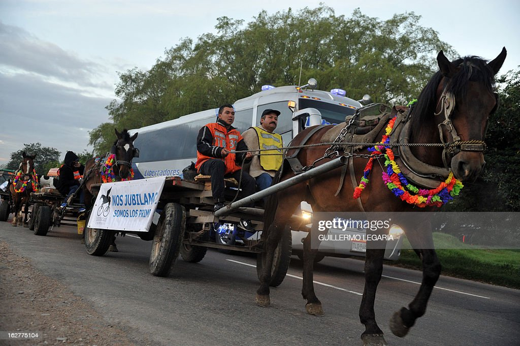 Some of 50 recyclers, pickers and loaders, ride horse-drawn carts on February 26, 2013, in Bogota, Colombia, as they participate in a caravan to deliver their horses to the University of Applied Sciences and Environment (UDCA), where they will receive veterinarian care and will wait to be adopted, as part of a process to replace their carts by motor vehicles. The replacement was an initiative of the Mayor of Bogota, the Mobility Secretariat, and Animal Rights associations. AFP PHOTO/Guillermo Legaria