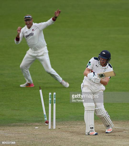 Somerset fielder Marcus Trescothick celebrates as Yorkshire batsman Andrew Gale is bowled by Tim Groenewald during day two of the Division One...