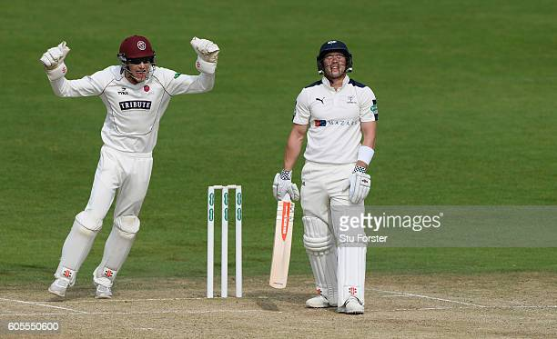 Somerset wicketkeeper Ryan Davies celebrates as Yorkshire batsman Andy Hodd is dismissed by Somerset bowler Jack Leach for 1 run during day three of...