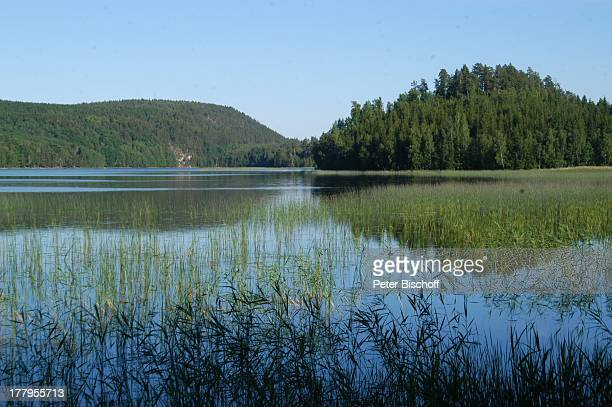SommenSee im Naturreservat Sjövik stergotland Schweden Europa NaturReservat Gewässer Reise