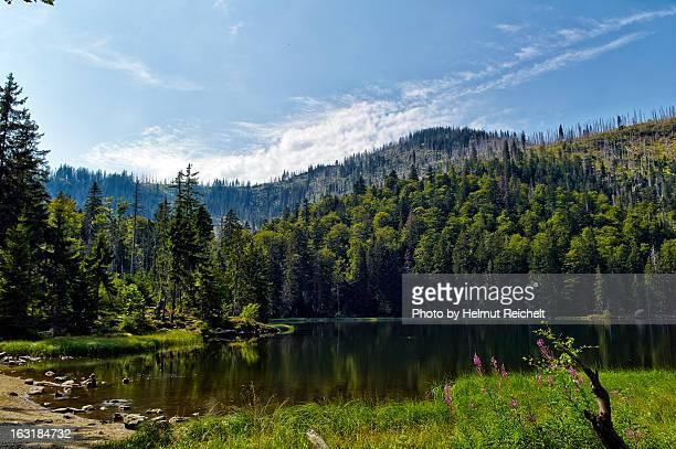 Sommer am Rachelsee