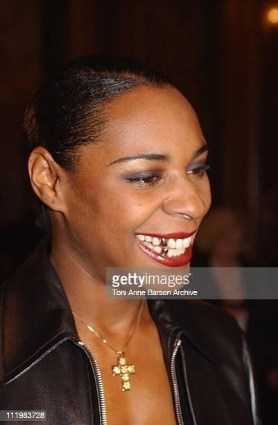 Sonique during World Music Awards 2002 PreAwards Cocktail at MonteCarlo Casino in MonteCarlo Monaco