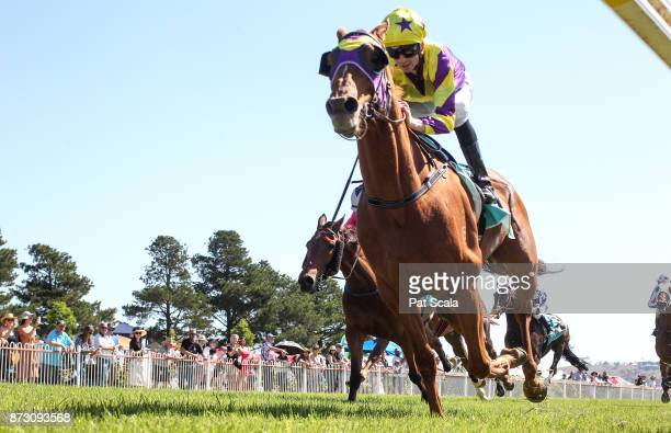 Sonntag ridden by Jye McNeil wins the ClassicBet Ararat Gold Cup at Ararat Racecourse on November 12 2017 in Ararat Australia