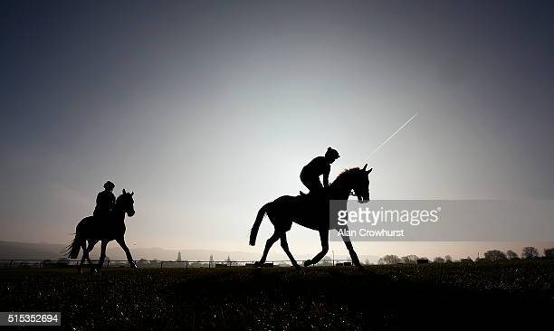 Sonny Carey riding Annie Power and Douvan with Gail Carlisle from the Willie Mullins stable on the gallops at Cheltenham racecourse on March 13 2016...