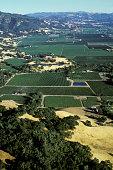 Sonoma County California United States circa 1970s