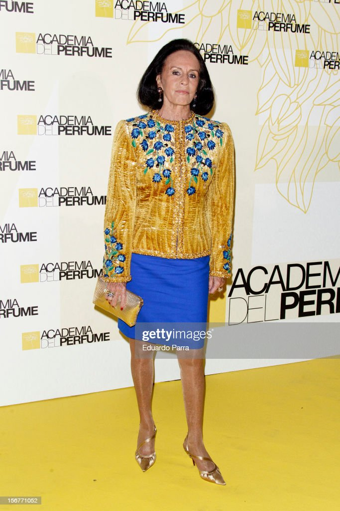 Sonsoles Diaz de Rivera attends Academia del perfume awards photocall at Casa de America on November 20, 2012 in Madrid, Spain.