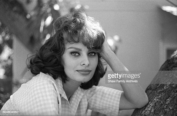 Sophia Loren poses leaning with her elbow on a tree in 1960 in Los Angeles California