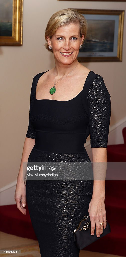 Sophie, Countess of Wessex attends a gala fundraising dinner, in aid of the Newport Minster Renewal Appeal, at the Royal Yacht Squadron during a day of engagements on the Isle of Wight on March 27, 2014 in Cowes, England.
