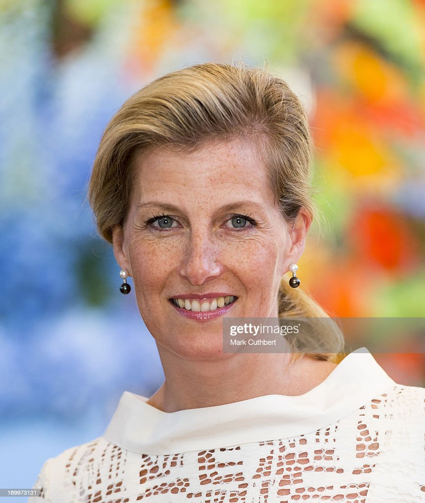 Sophie, Countess of Wessex attends a reception for the Guildford Flower Festival on June 5, 2013 in Guildford, England.