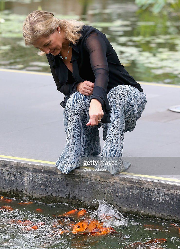 Sophie, Countess of Wessex feeds coy carp in the pond at the ITC Sonar Kolkata Hotel on day 1 of her visit to India with the Charity ORBIS on September 18, 2013 in Kolkata, India. During her solo visit to India the Countess is supporting the sight saving charity ORBIS.The Countess will visit the ORBIS Flying Eye Hospital in Kolkata, India where she will witness patients undergoing surgery. Onboard HRH will meet medical volunteers from around the world who share their skills with local eye care workers to improve eye care in local communities.