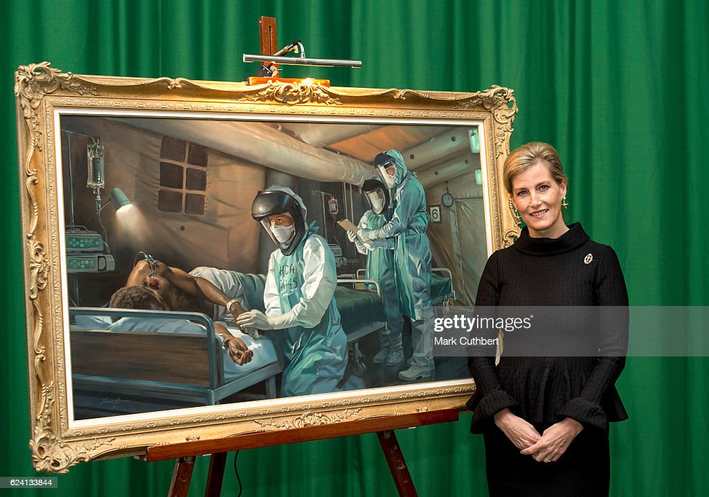 Sophie, Countess of Wessex in her role as Colonel in Chief, Queen Alexandra's Royal Army Nursing Corps attends a picture unveiling at Royal Military Academy Camberley on November 18, 2016 in Camberley, England.