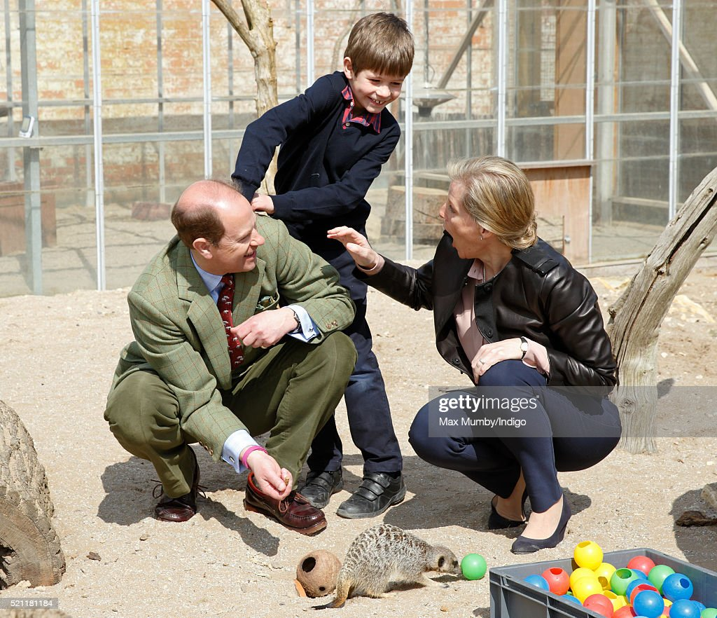 Sophie, Countess of Wessex looks on as James, Viscount Severn attempts to put a live cricket down Prince Edward, Earl of Wessex's back as they feed crickets to meerkats during a visit to the Wild Place Project at Bristol Zoo on April 14, 2016 in Bristol, England.