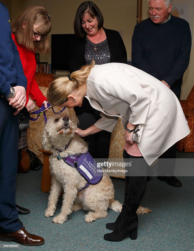 Sophie, Countess of Wessex meets a canine partner dog as she visits Christopher's Children's Hospice to mark the 15th birthday of the charity Shooting Star Chase on February 9, 2016 in Guildford, England.