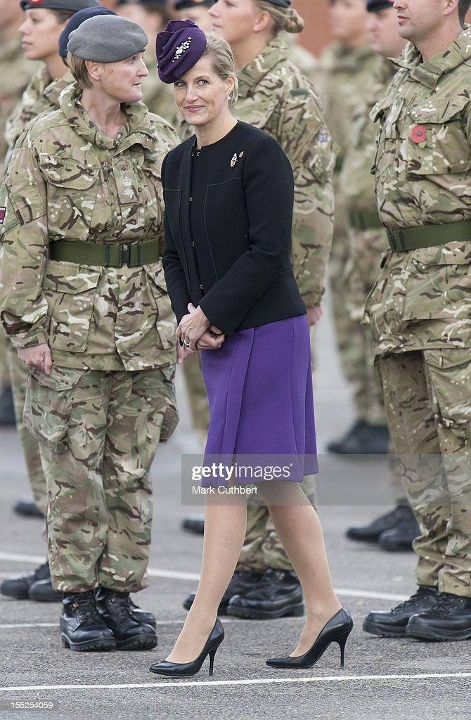 Sophie, Countess of Wessex presents Operational Service Medals for duty in Afghanistan to 22 Field hospital, Aldershot troops on November 2, 2012 in Aldershot, England.