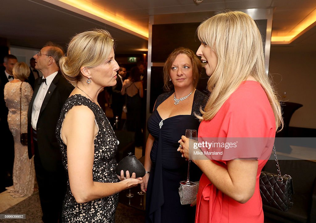 sophie-countess-of-wessex-talks-to-guests-at-the-st-john-ambulances-picture-id599939952