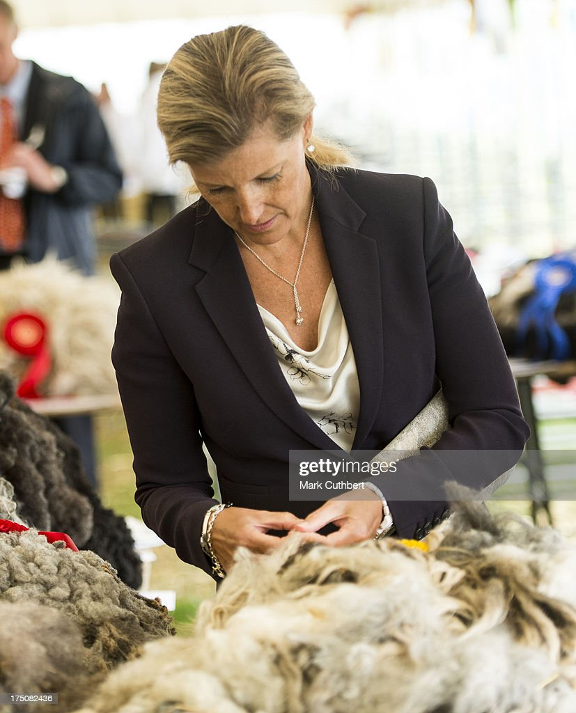 Sophie Rhys-Jones, Countess of Wessex studies some sheep fleeces during her visit to the New Forest and Hampshire county show at The Showground, New Park on July 31, 2013 in Brockenhurst, England.