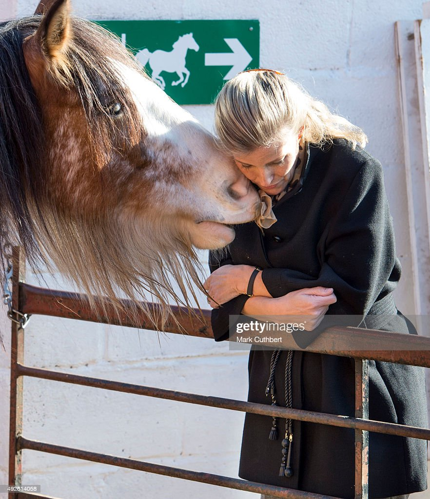 Sophie, The Countess Of Wessex with a blind rescue horse during a visit to Remus Memorial Horse Sanctuary on October 14, 2015 in Ingatestone, Essex.