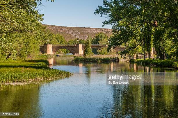 Soria bridge and Duero riverbanks