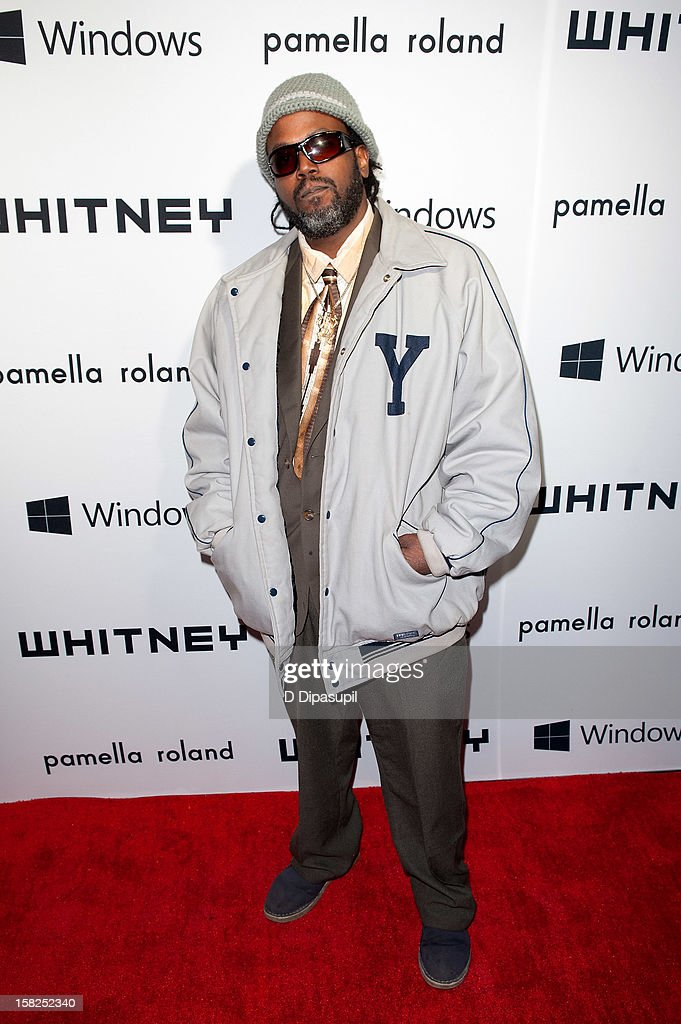 Soul Saks attends the Whitney Museum of American Art's 2012 Studio Party at The Whitney Museum of American Art on December 11, 2012 in New York City.