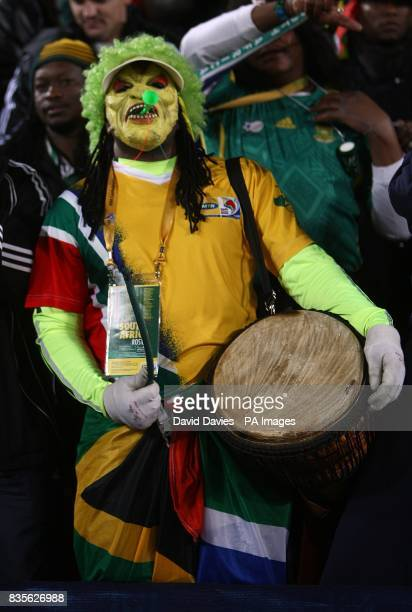 A South Africa fan in fancy dress in the stands